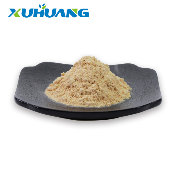 buy-best-American-Ginseng-Root-Extract-Powder-xuhuang